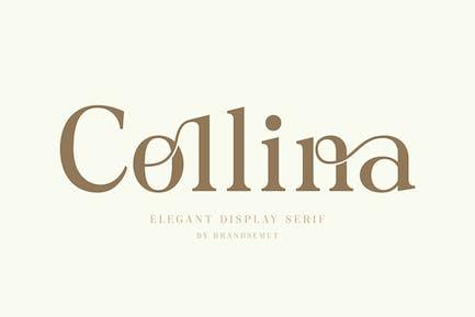 Collina - Ligature Serif Font