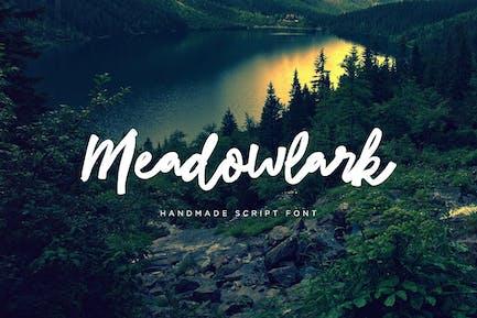 Alondra de Meadowk