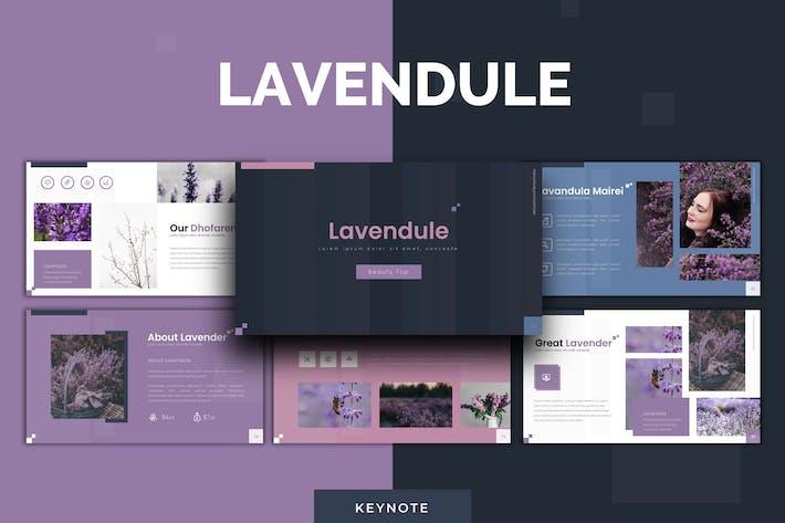 Lavendule - Keynote Template