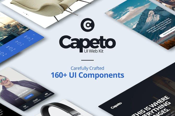Thumbnail for Capeto Web UI Kit