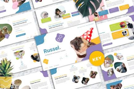 Russel - Pet Care Keynote Templates