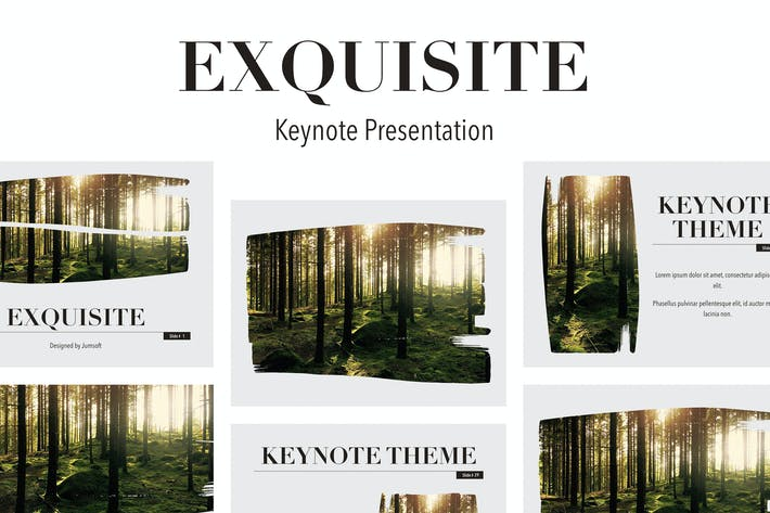 Thumbnail for Exquisite Keynote Template