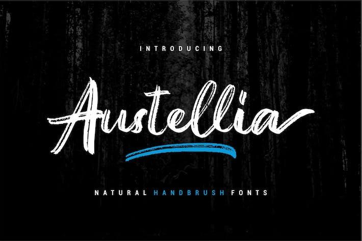 Austellia | Шрифт кисти