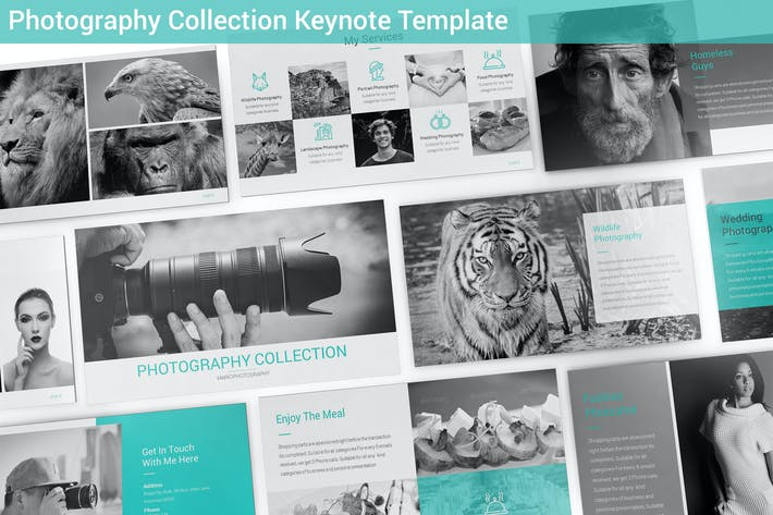 Thumbnail for Photography Collection Keynote Template
