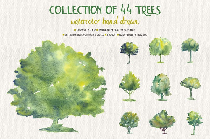 Thumbnail for Collection of 44 Watercolor Trees