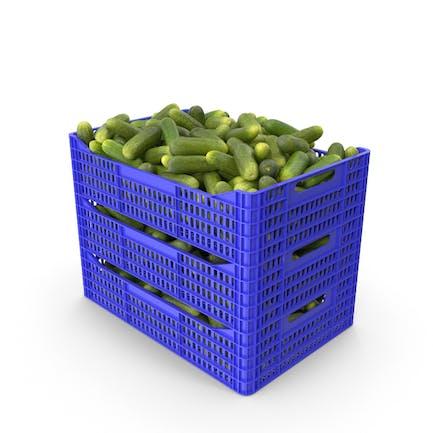 Plastic Crate of Gherkin Cucumbers