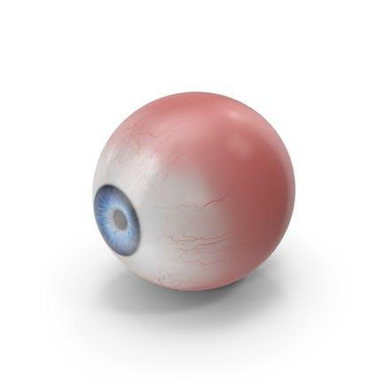Realistic Eye Blue
