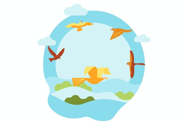 Observing different types of birds on the sky