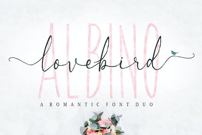 Thumbnail for Albino Lovebird Font
