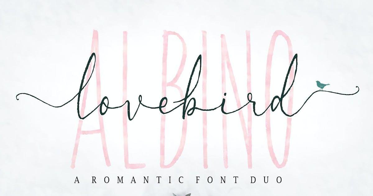 Download Albino Lovebird Font by dhanstudio