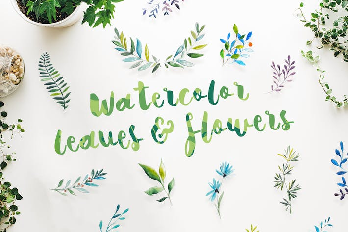 Thumbnail for 21 Watercolor Leaves & Flowers