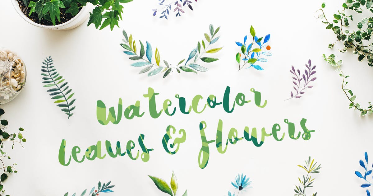Download 21 Watercolor Leaves & Flowers by cerpow