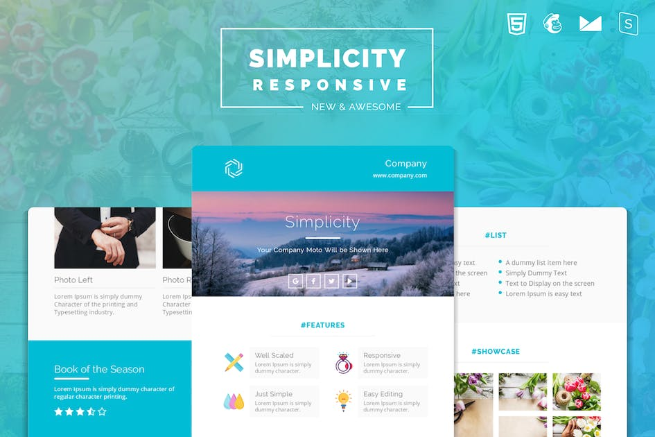 Download Simplicity Responsive Email Template by Avagon