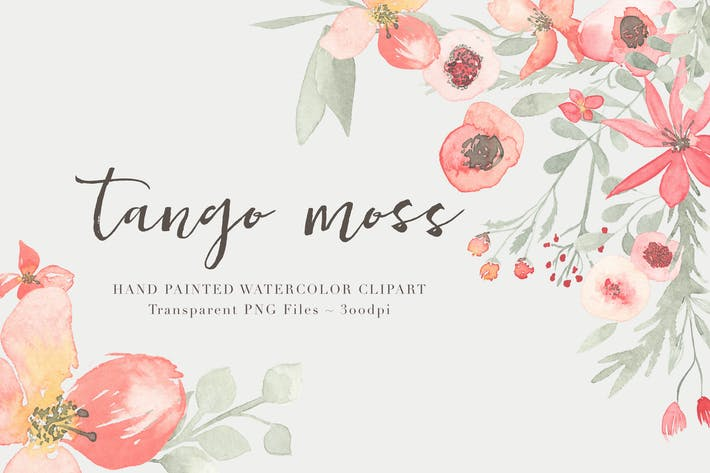 Thumbnail for Tango Moo - Watercolor Floral Clipart Set