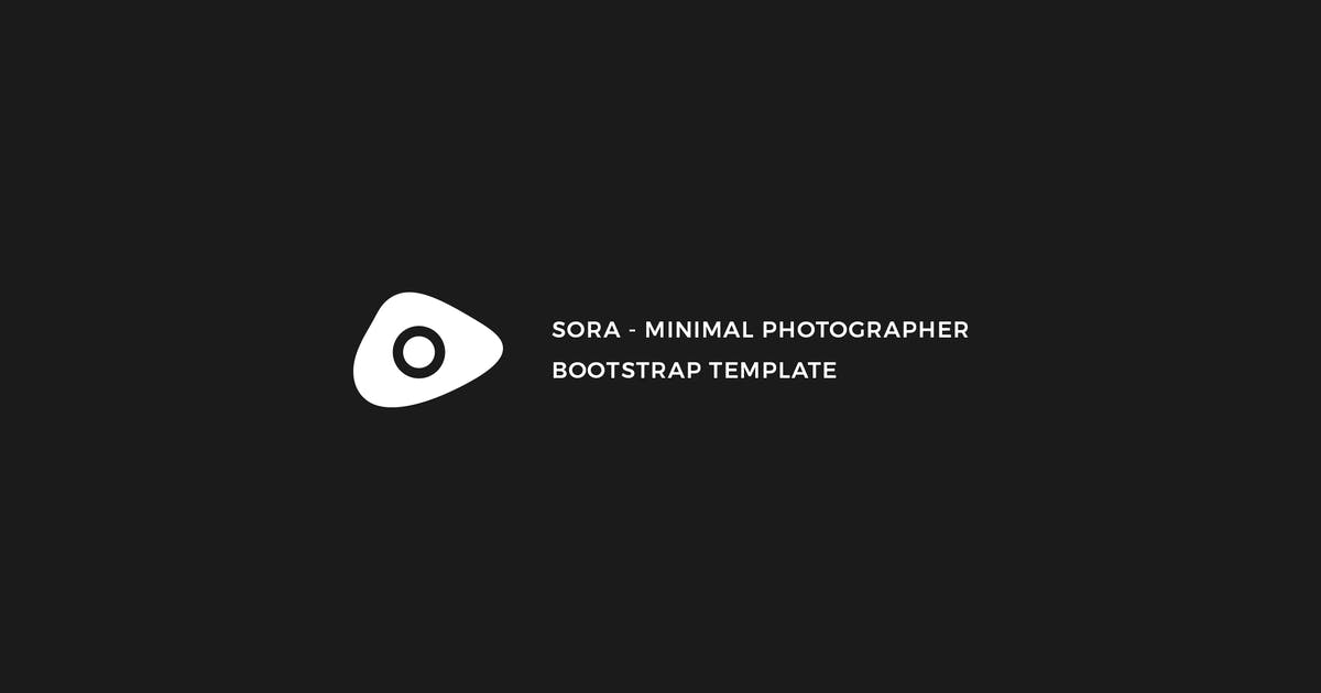 Download Sora - Minimal Photographer Template by mutationthemes