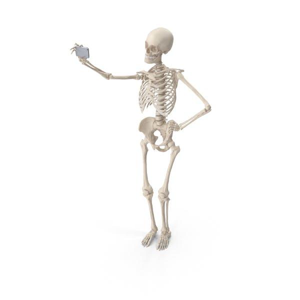 Thumbnail for Skeleton Selfie