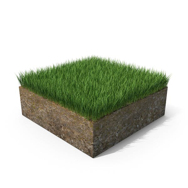 Thumbnail for Grass Cross Section with Soil