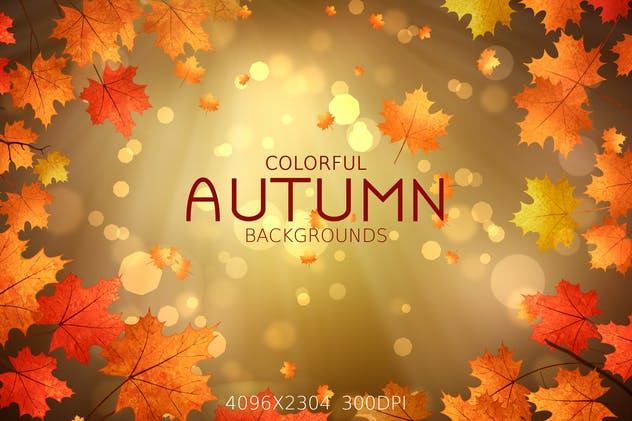 Colorful Autumn Backgrounds