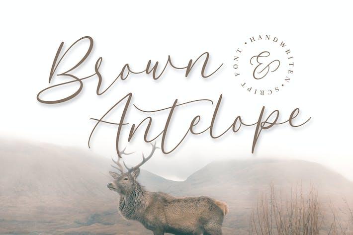 Thumbnail for Brown Antelope - Beauty Script Font