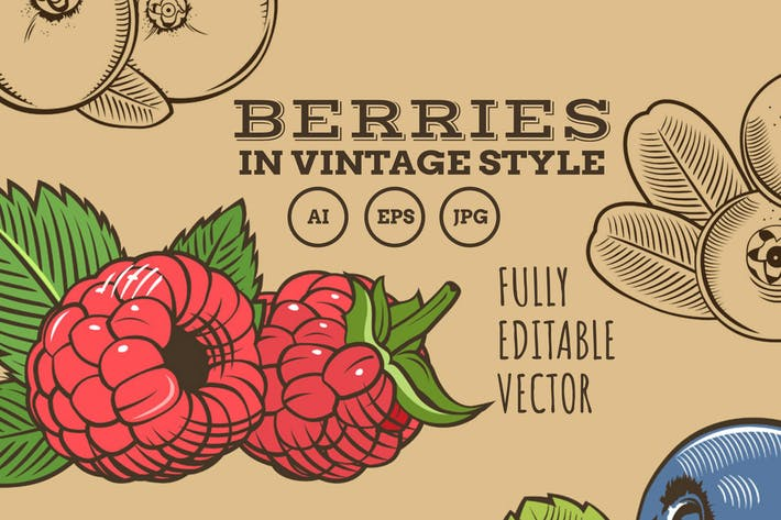Thumbnail for Berries in Vintage Style