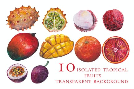 10 isolated watercolor tropical fruits