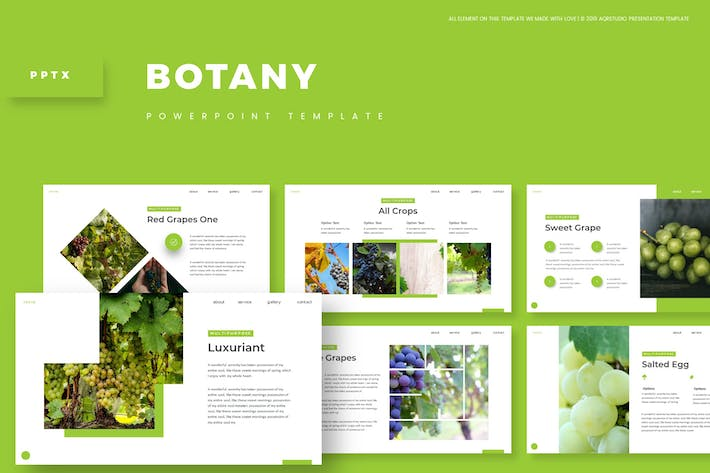 Botany - Powerpoint Template