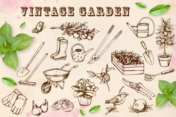 Thumbnail for Vintage Garden
