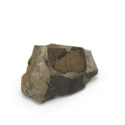 Scanned Cliff Rock