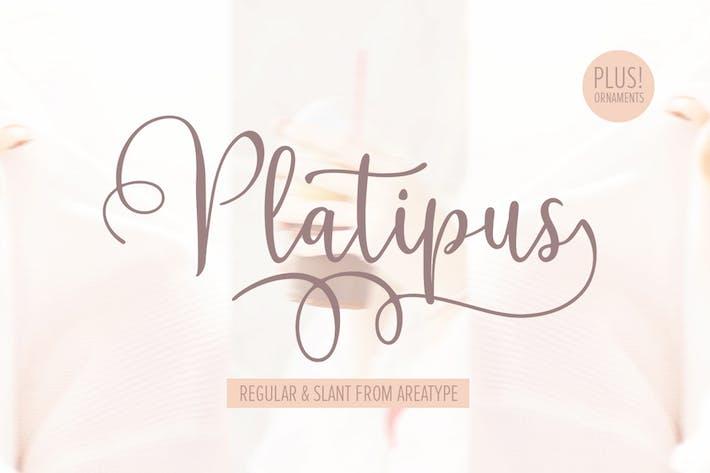 Thumbnail for Platipus Script