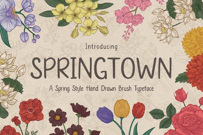 police de caractères Springtown