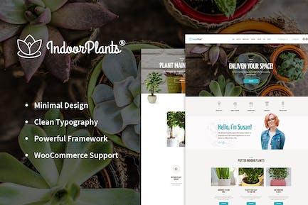 Indoor Plants | Houseplants store & Gardening WP