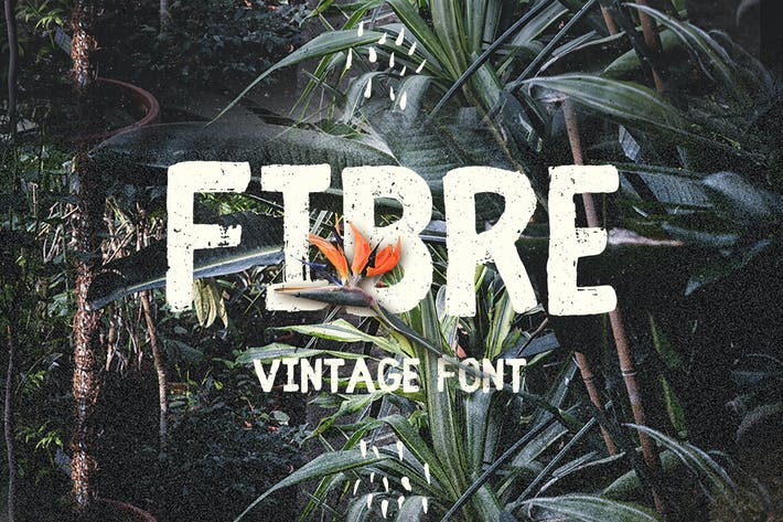 Thumbnail for Fibre - Fuente Vintage