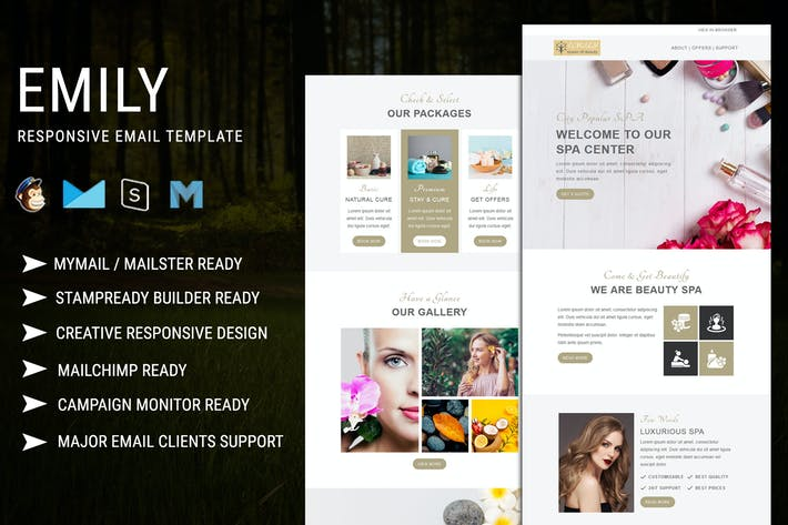 Thumbnail for Emily - Responsive Email Template
