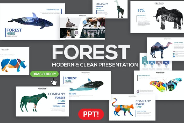 Thumbnail for Forest Powerpoint Presentation