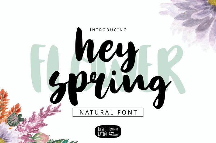 Thumbnail for Hey Spring Brush Font