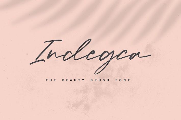 Thumbnail for Indegca - La police de pinceau de beauté