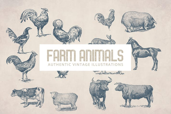Cover Image For Vintage Farm Animals Illustrations