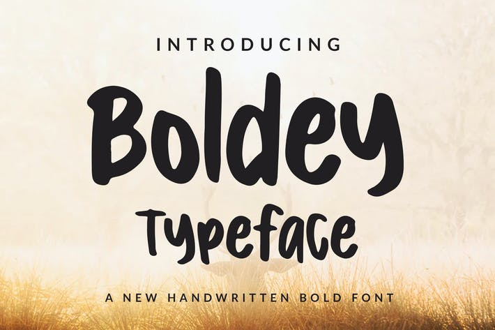 Cover Image For Boldey Typeace - A New Handwritten Bold Font