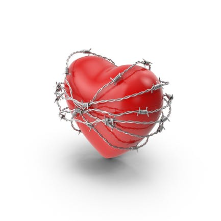Сердце в колючей проволоке