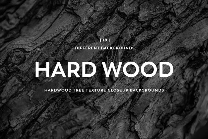 Thumbnail for Hardwood Tree Texture Closeup Backgrounds