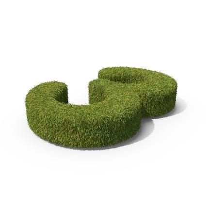 Gras Nummer 3