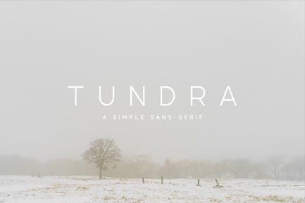 Tundra Police