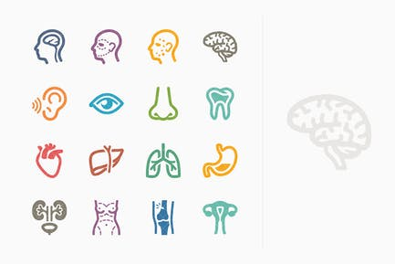 Colored Medical Specialties Icons Set 1 - Sympa