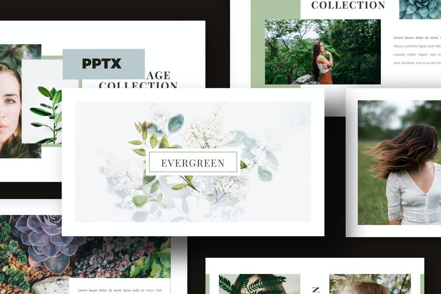 Evergreen - ECO powerpoint Business Company