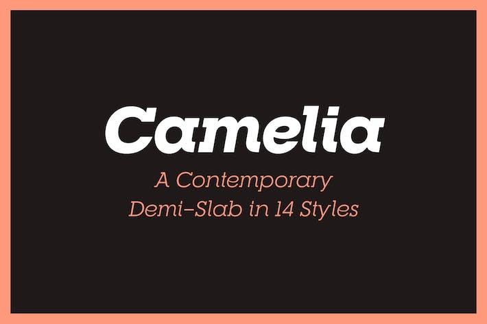 Thumbnail for RNS Camelia