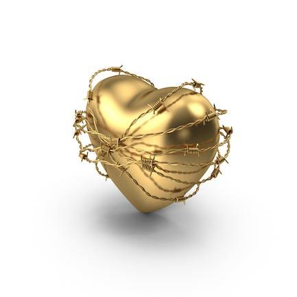 Золотое сердце в колючей проволоке