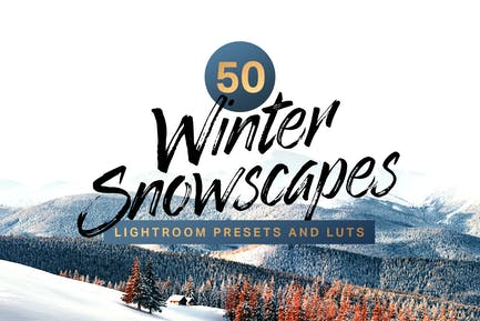 50 Winter Snowscape Lightroom Presets and LUTs
