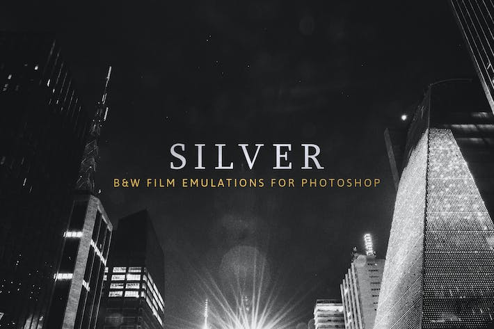 Thumbnail for Silver – 28 Real B&W Film Emulations