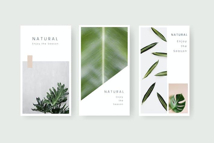 Thumbnail for Natural social media template