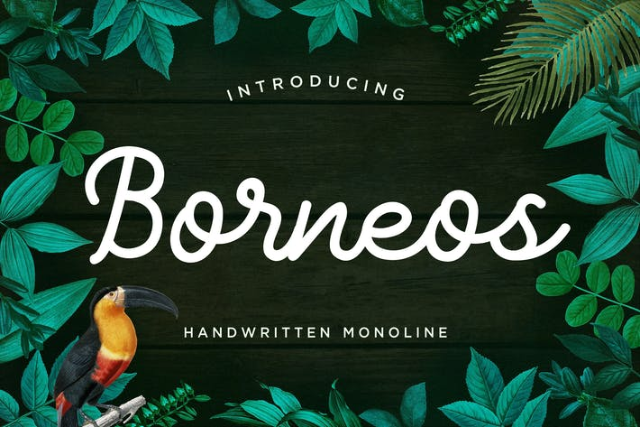 Thumbnail for Borneos - Monoline Handwriting